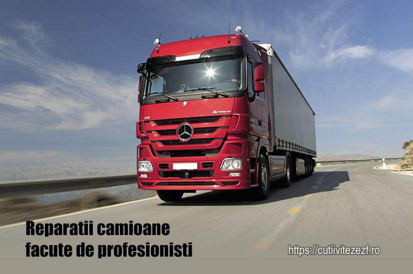 transporturi camioane